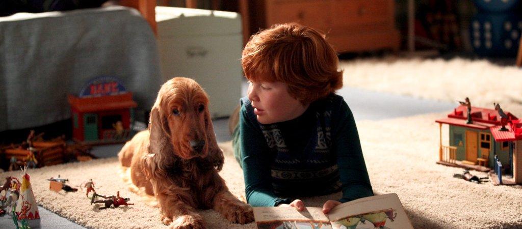 Photo du film : Boule et Bill
