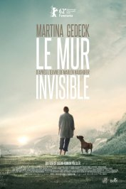 background picture for movie Le mur invisible