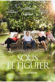background picture for movie Sous le figuier