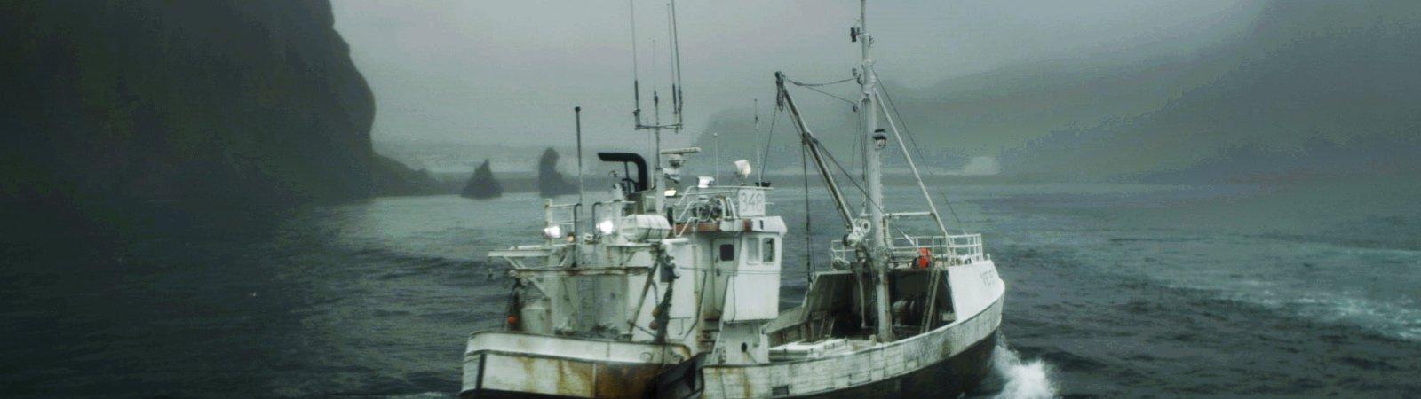 Photo du film : Survivre