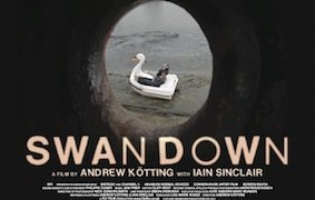 Affiche du film : Swandown