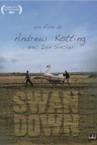 Affiche du film : Swandown