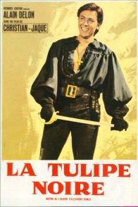 Affiche du film : La Tulipe noire
