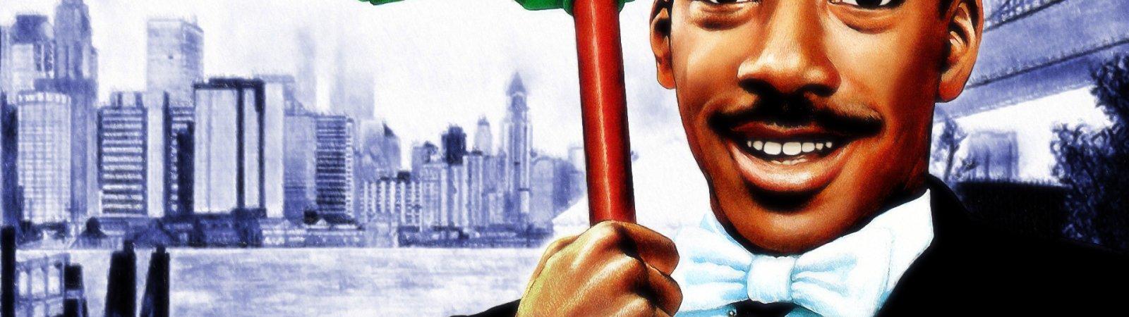 Photo du film : Un prince a new york