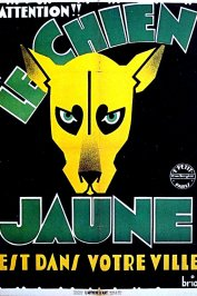background picture for movie Le chien jaune