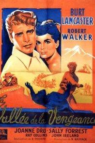 Affiche du film : La vallee de la vengeance
