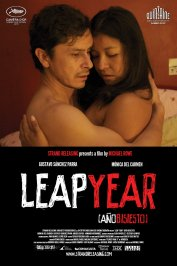 background picture for movie Leap Year