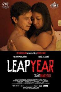 Affiche du film : Leap Year