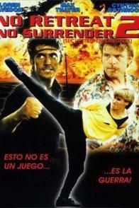 Affiche du film : Karate tiger