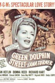 Affiche du film : Le pays du dauphin vert