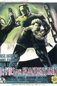 Affiche du film : Le fils de frankenstein