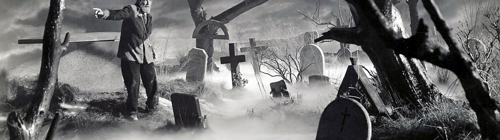 Photo du film : Le fils de frankenstein