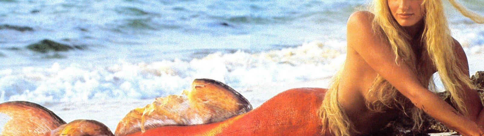 Photo du film : Splash