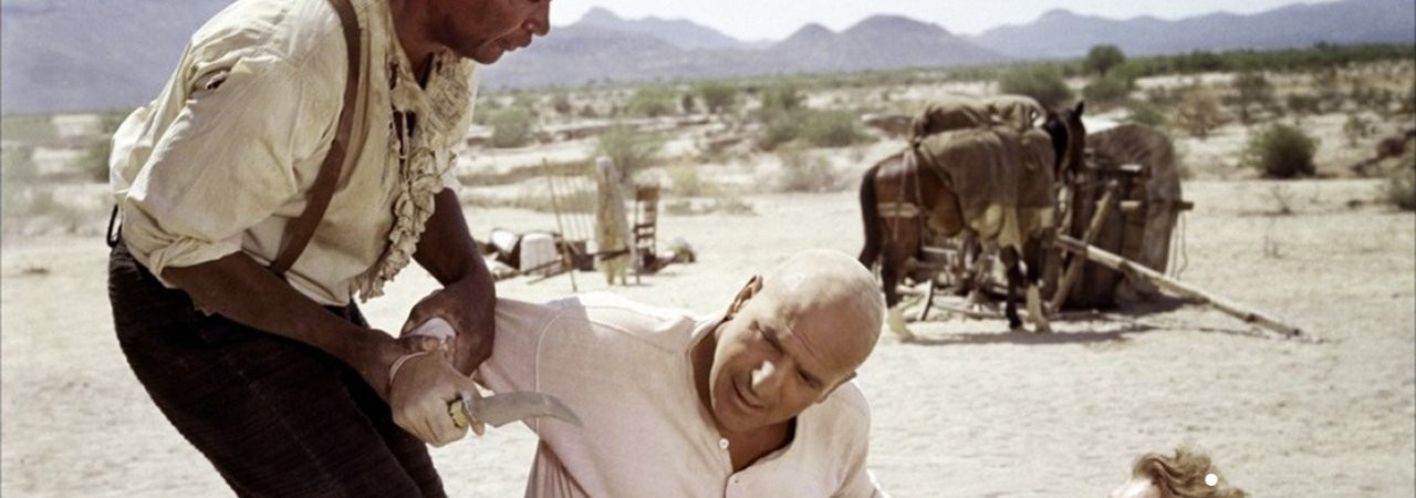 Photo du film : Les chasseurs de scalps