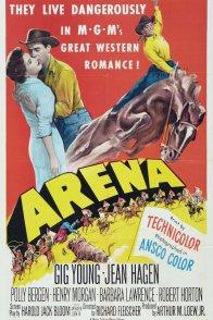 Affiche du film : Arena