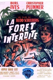 background picture for movie La foret interdite