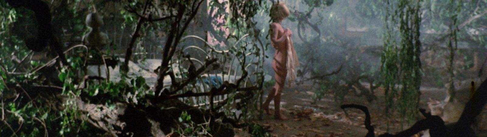 Photo du film : La maison de l'exorcisme