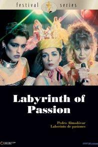 Affiche du film : Labyrinthe des passions