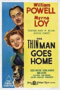 Affiche du film : L'introuvable rentre chez lui