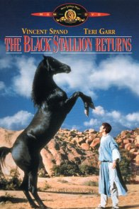 Affiche du film : Le retour de l'etalon noir