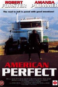 Affiche du film : American perfekt