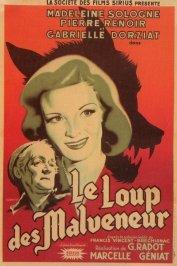 background picture for movie Le loup des malveneur