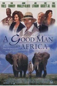 Affiche du film : Un anglais sous les tropiques