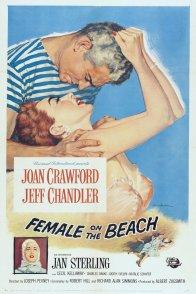 Affiche du film : La maison sur la plage