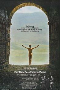 Affiche du film : Francois et le chemin du soleil