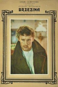 Affiche du film : Le bois de bouleaux