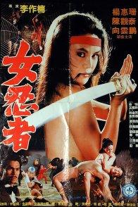 Affiche du film : Challenge the ninja