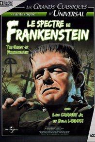 Affiche du film : Le spectre de frankenstein