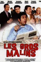 background picture for movie Les gros malins