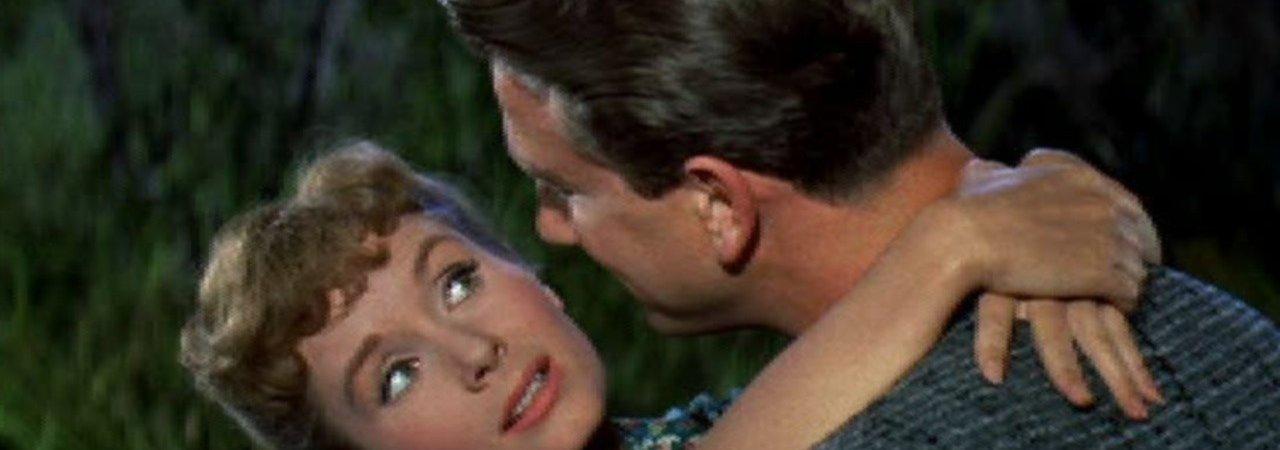Photo du film : Le celibataire
