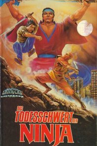 Affiche du film : American Ninja