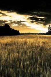 background picture for movie La gorge du diable