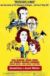 Affiche du film : Le clan des irreductibles