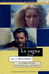 Affiche du film : Liza