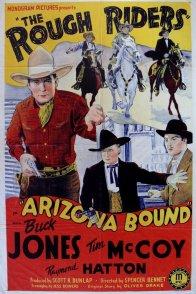 Affiche du film : Arizona