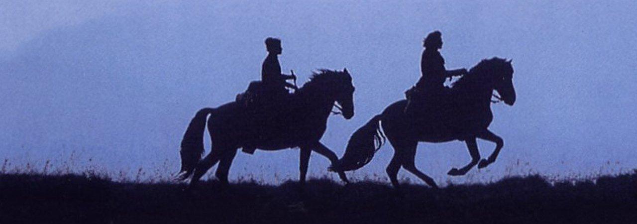 Photo du film : Le Hussard sur le toit