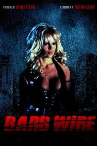 Affiche du film : Barb wire