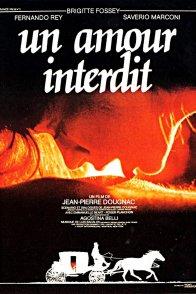 Affiche du film : Un amour interdit