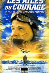 Affiche du film : Les ailes du courage