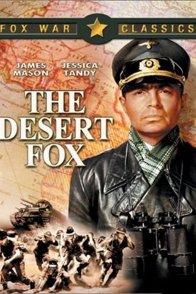 Affiche du film : Le renard du desert