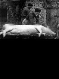 Photo dernier film Jean Eustache
