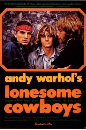 background picture for movie Lonesome cowboys