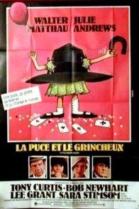 Affiche du film : La puce et le grincheux