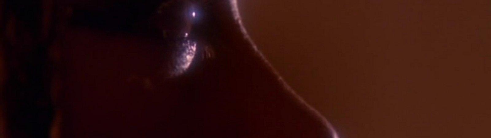 Photo du film : La malediction de la vallee des rois