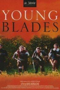 Affiche du film : La jeunesse des trois  mousquetaires