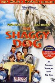 background picture for movie Quelle vie de chien